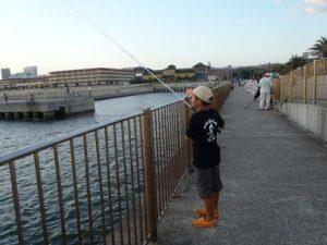 マリンピア神戸でエギング