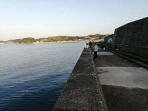 芳養漁港_エギング