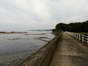 天神崎元島