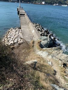 和歌山紀北のエギングポイント下津加茂川河口の白灯