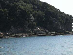 市江漁港エギングポイント